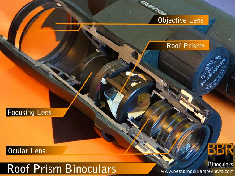 Cutaway of a Vanguard Endeavor Roof Prism Binocular showing the arrangement of the Lenses & Prisms inside the chassis